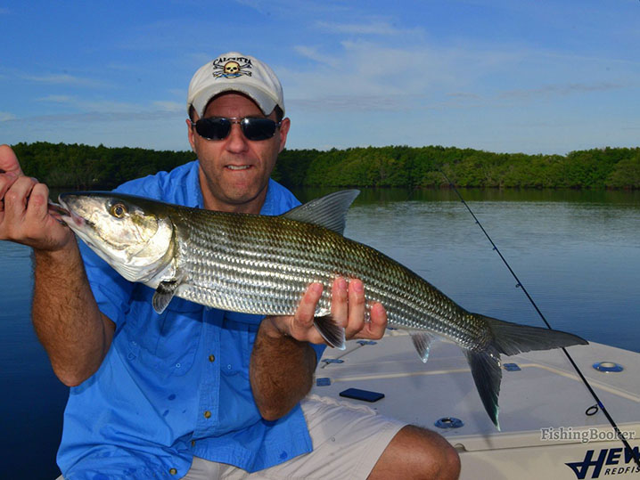 An angler holding a Bonefish while fishing on the flats in Miami