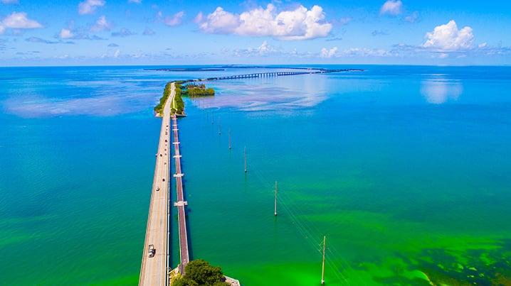 Florida keys bridge fishing 113 miles of angling paradise for Florida keys bridge fishing