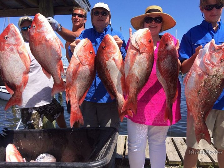 A group of friends holding limits of Red Snapper they caught while fishing out of Pensacola.