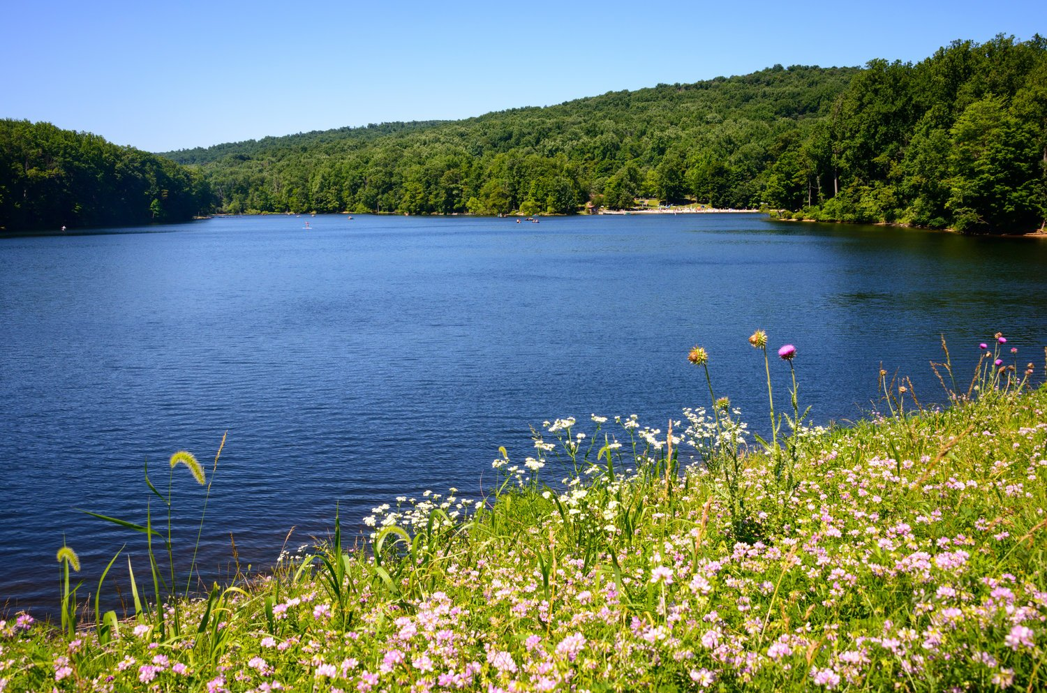 Hunting Creek Lake in Cunningham Falls State Park, one of the best places to go fishing near D.C.