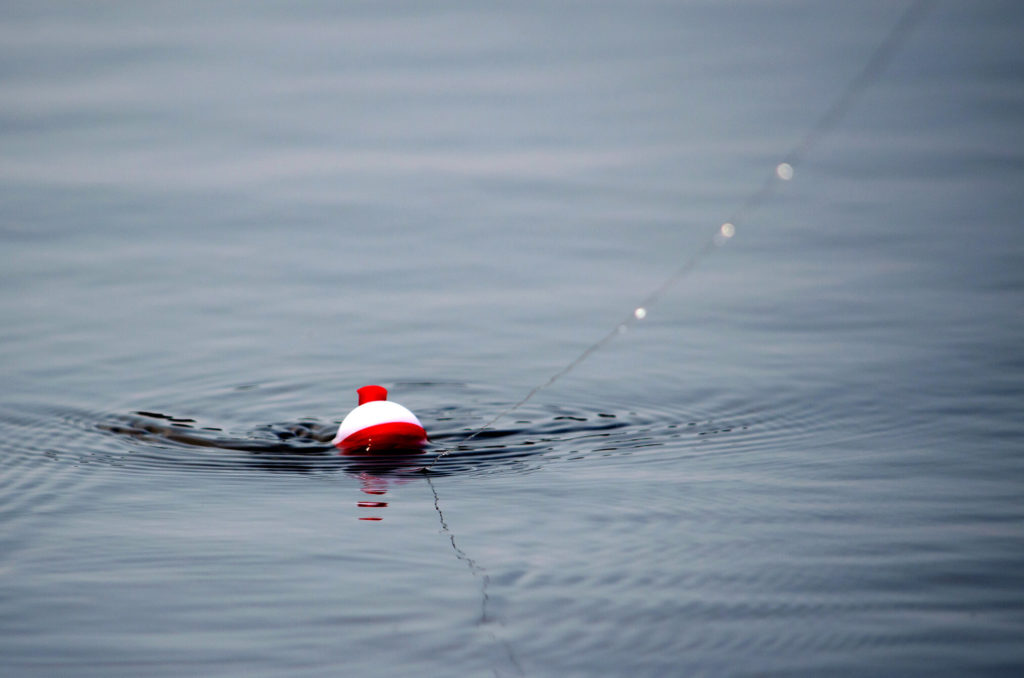 a closeup of a fishing boober floating in the water