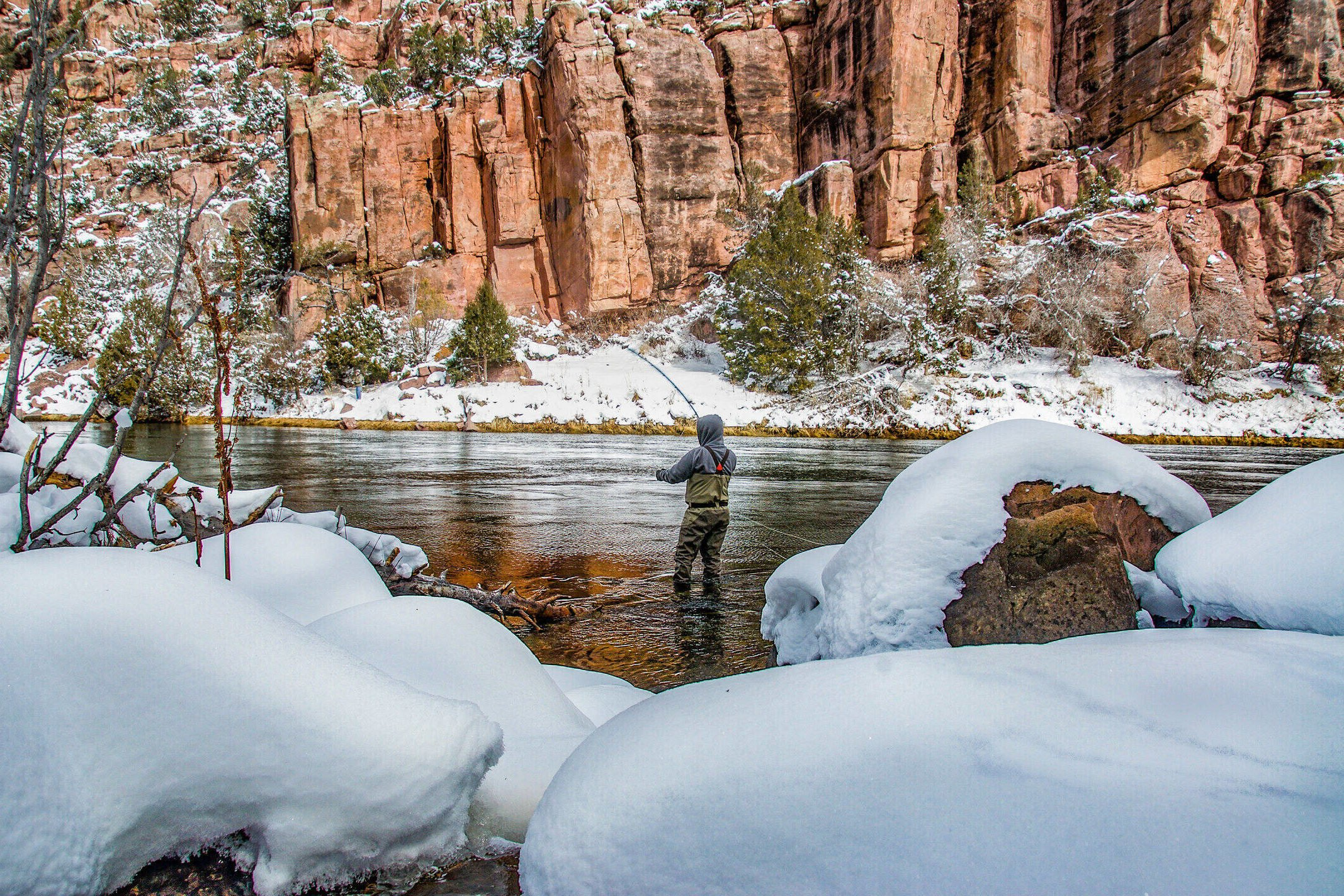 An angler in knee-deep water is casting for Rainbow Trout, in Flaming Gorge. The front of the picture shows snow-covered stones, and the back shows orange cliffs.