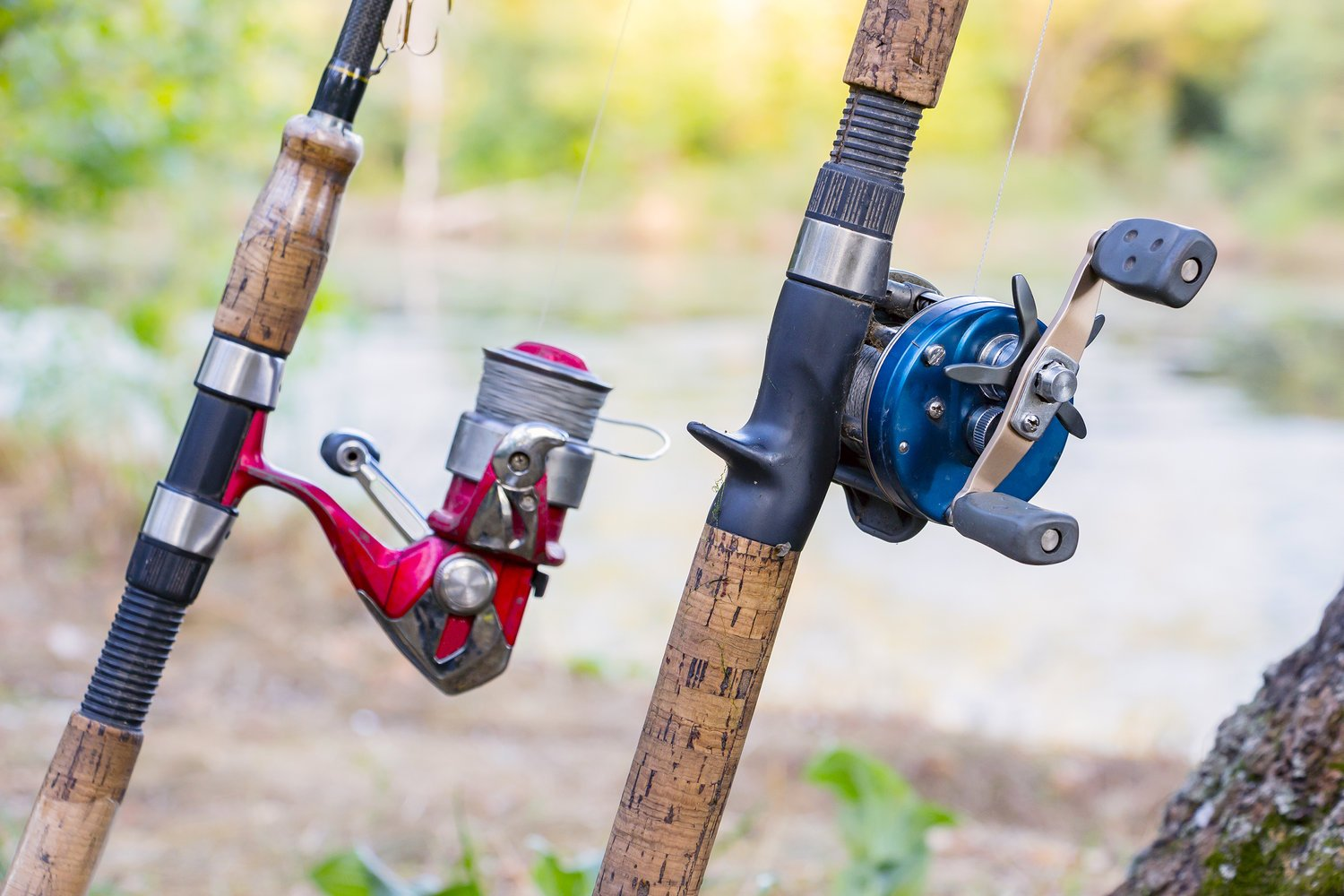 two most common types of fishing reels on a couple of fishing rods: a spinning reel on the left, and a baitcasting reel on the right