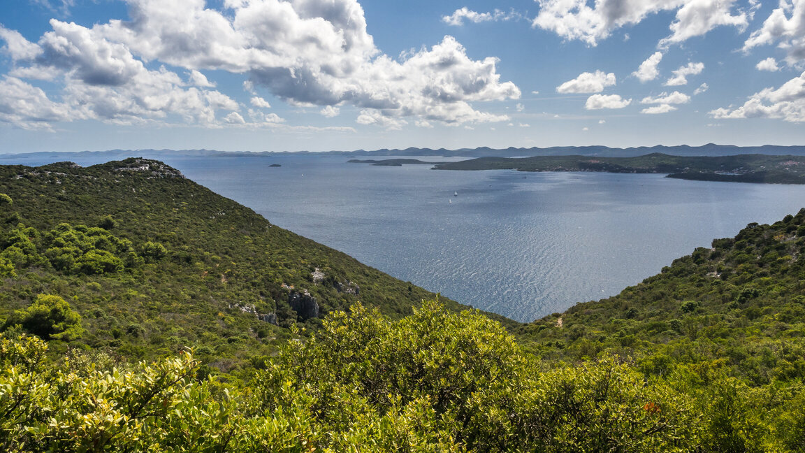 A view of the Ugljan Island and the Adriatic Sea from a hill top