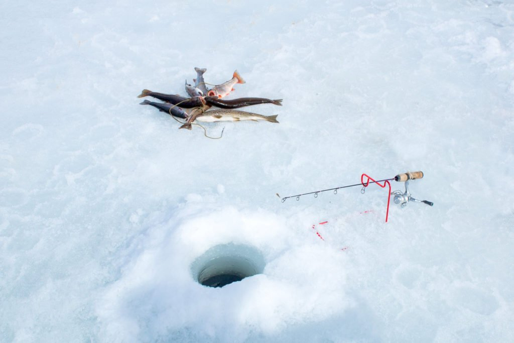 A small fishing rod next to a hole in the ice. Several caught fish in the background
