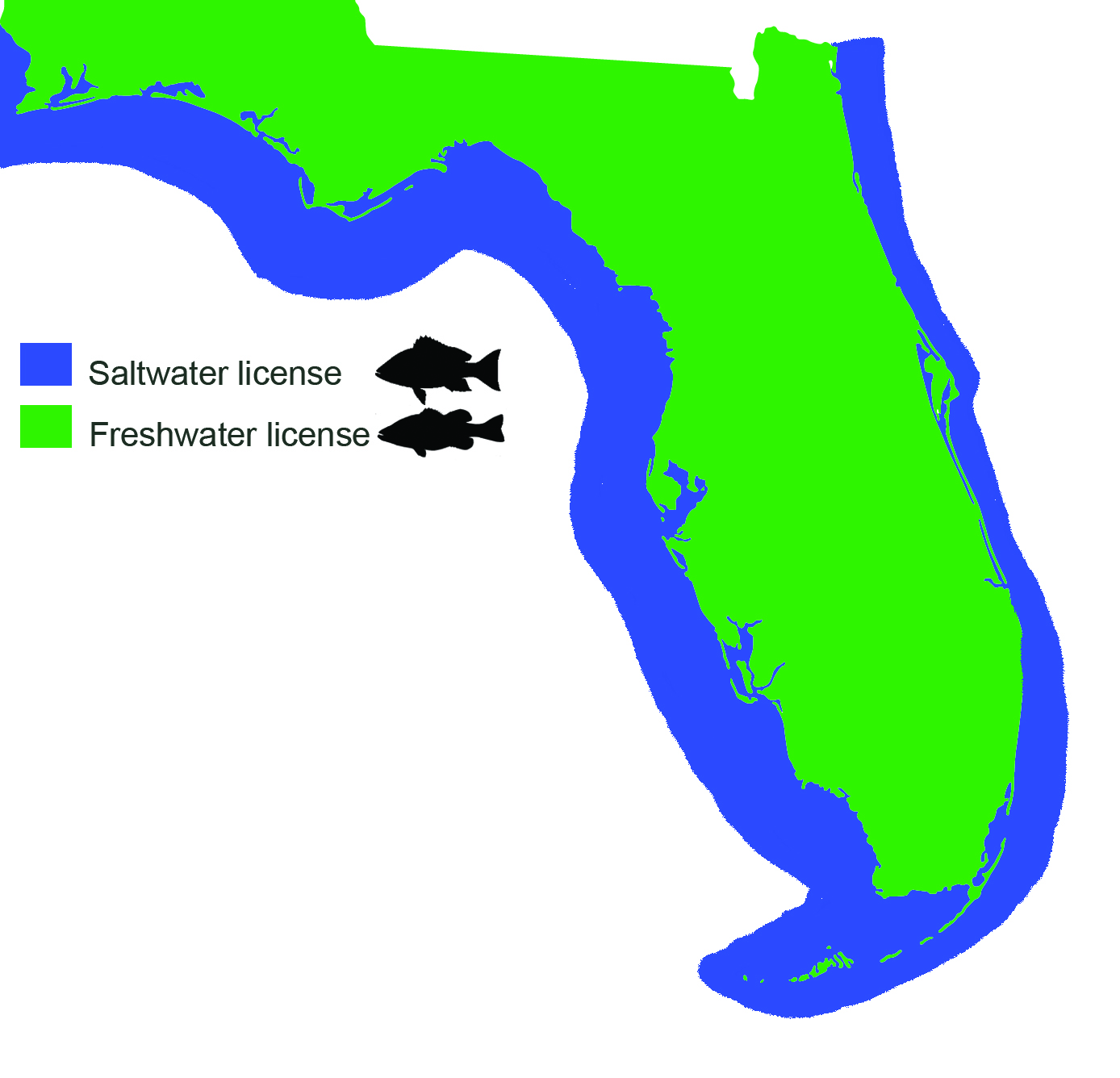 Getting a florida fishing license all you need to know for Florida freshwater fishing license