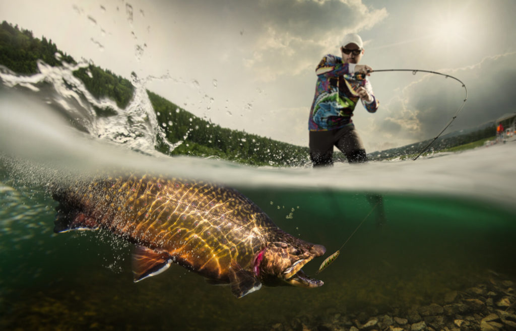 an angler setting the hook in the fish's mouth