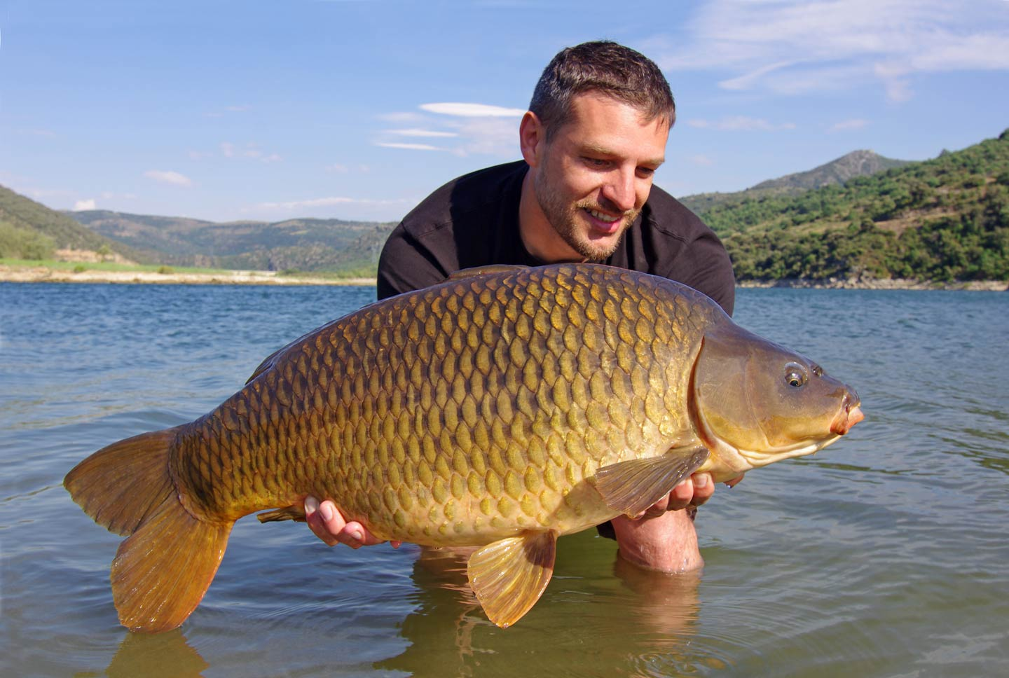 A man holding a big Carp in the water