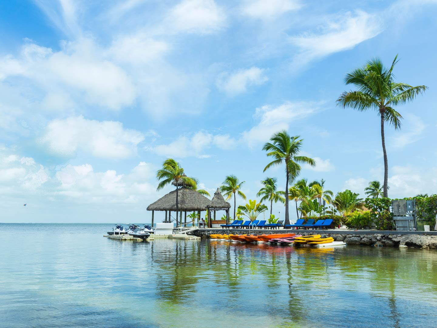 The docks with palm trees in Key Largo, Florida