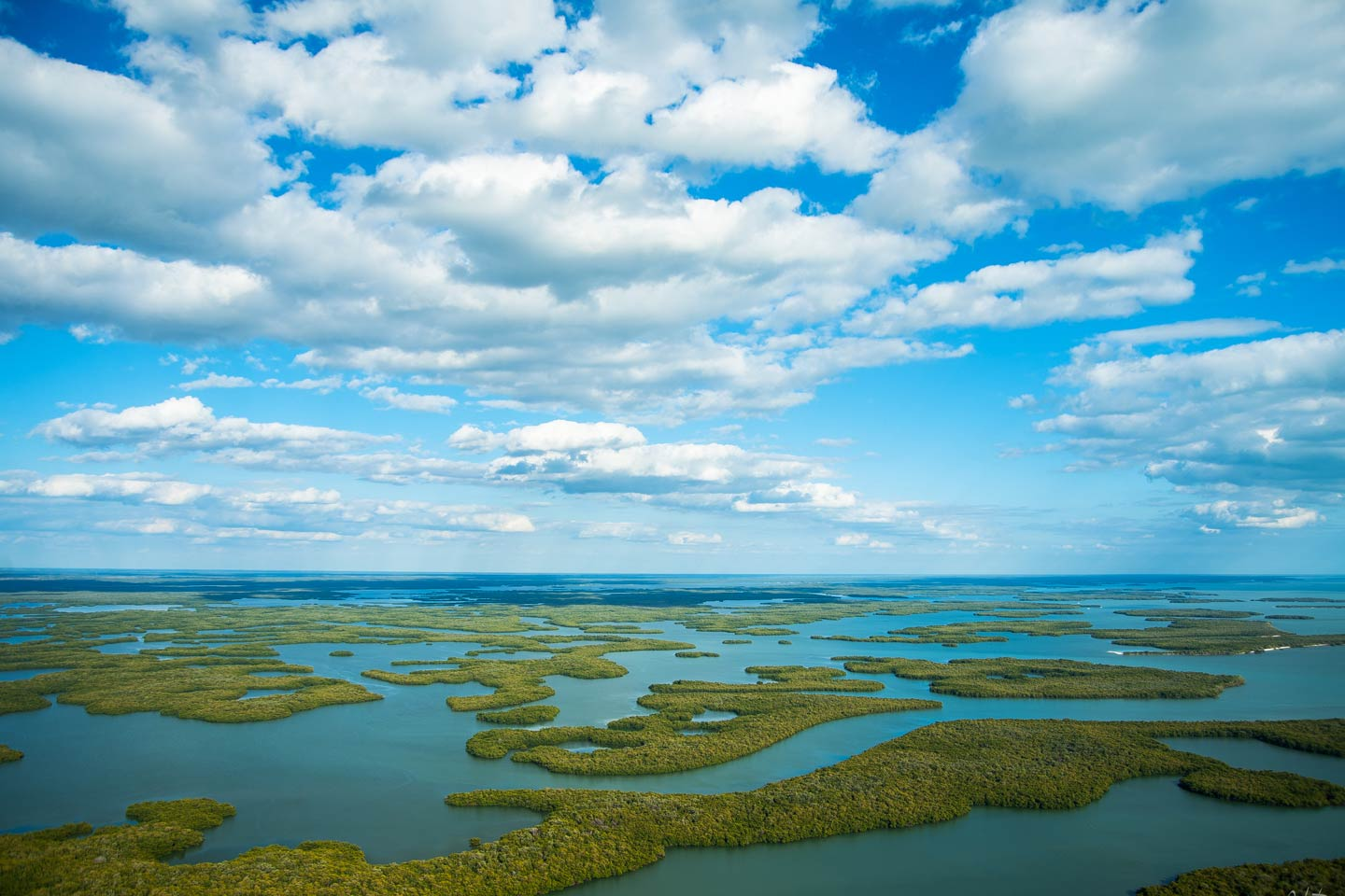 Aerial view of the Ten Thousand Islands in the Everglades National Park