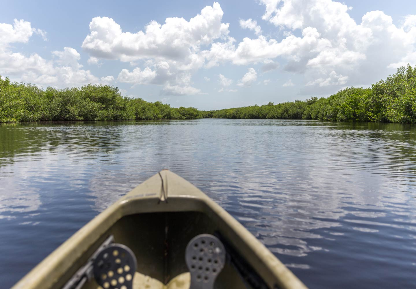 A kayak overlooking the wetlands in the Everglades, Florida