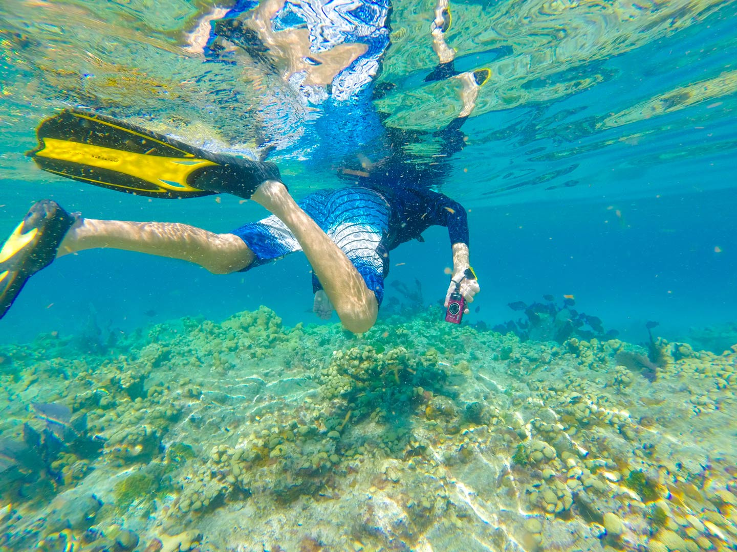 A man snorkeling in the reefs of Key Largo, Florida