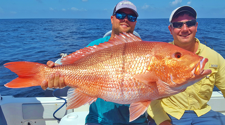 Red snapper season 2017 where and when to fish for Red snapper fishing