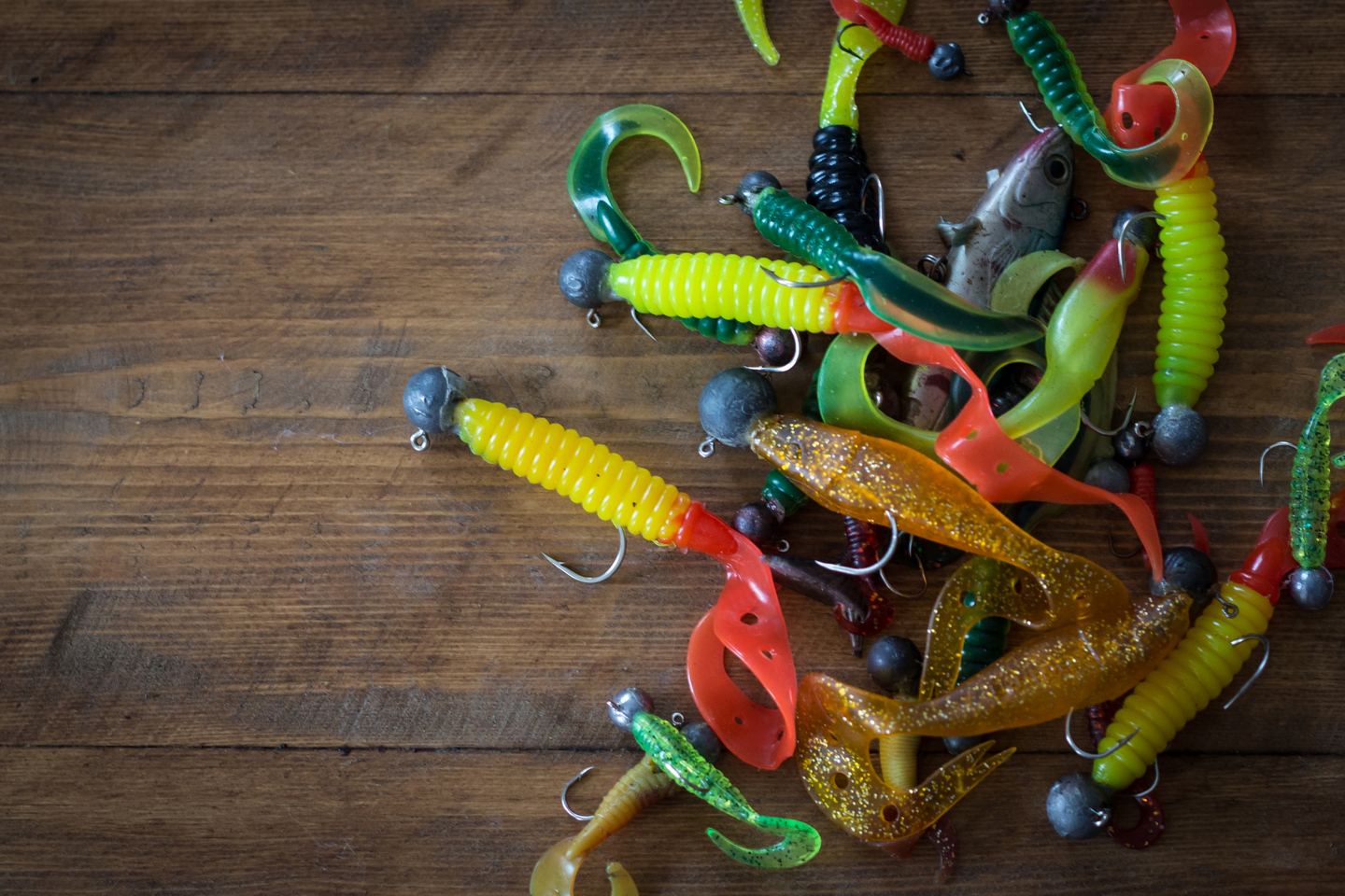 Most Common Types of Fishing Lures – All You Need to Know