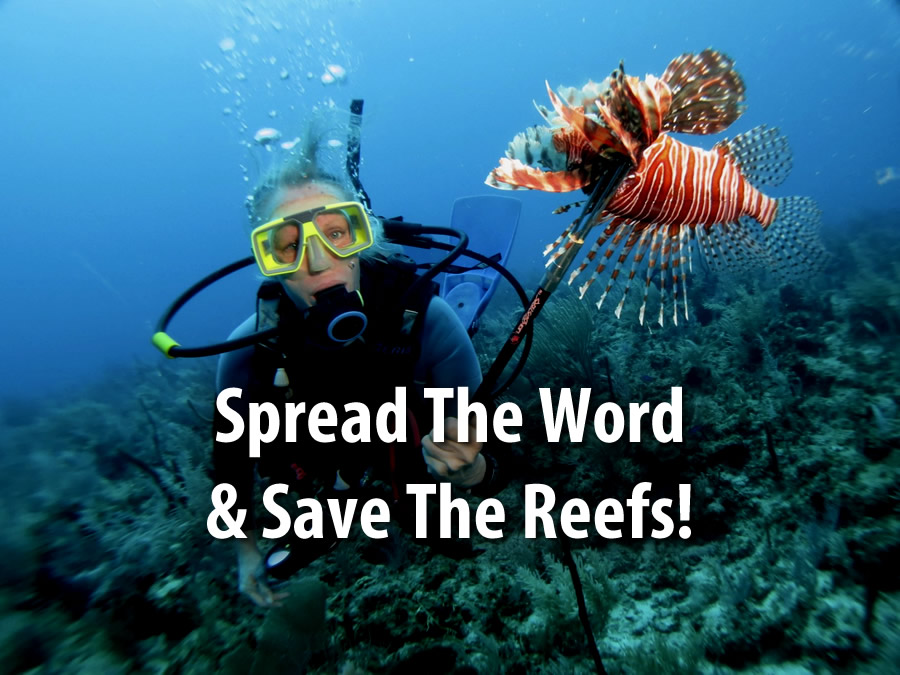 """A scuba diver underwater holding a Lionfish on a pole spear with the text """"Spread the word & save the reefs!"""" superimposed in white"""