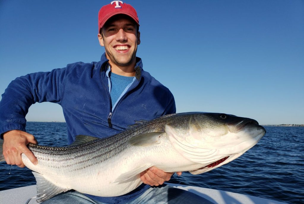 An Maryland angler with a Striped Bass in his hands. Striped Bass is the state fish of Maryland