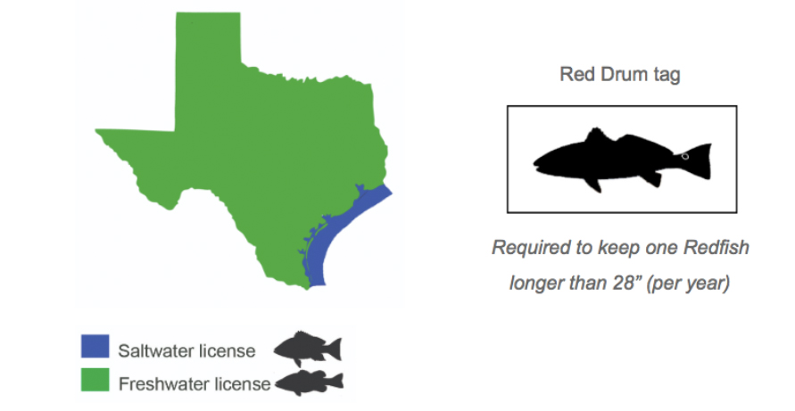 Planning to buy a texas fishing license here 39 s what you for Where to buy texas fishing license