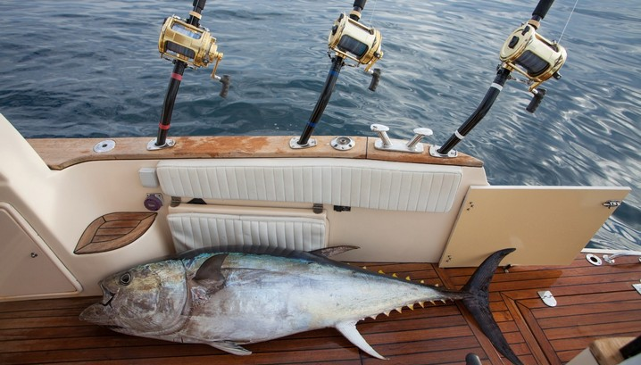 What to pack for a charter fishing trip fishingbooker blog for Tuna fishing boat