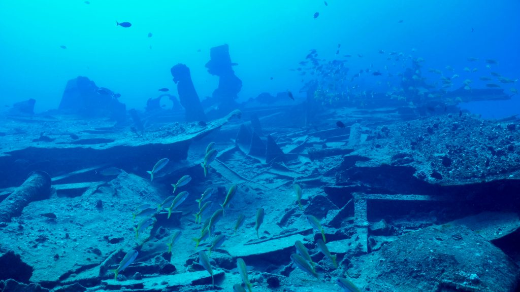 an underwater wreck and fish swimming over it